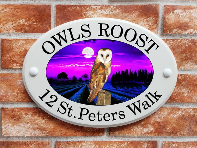 Barn owl in moonlight - House Sign Shop