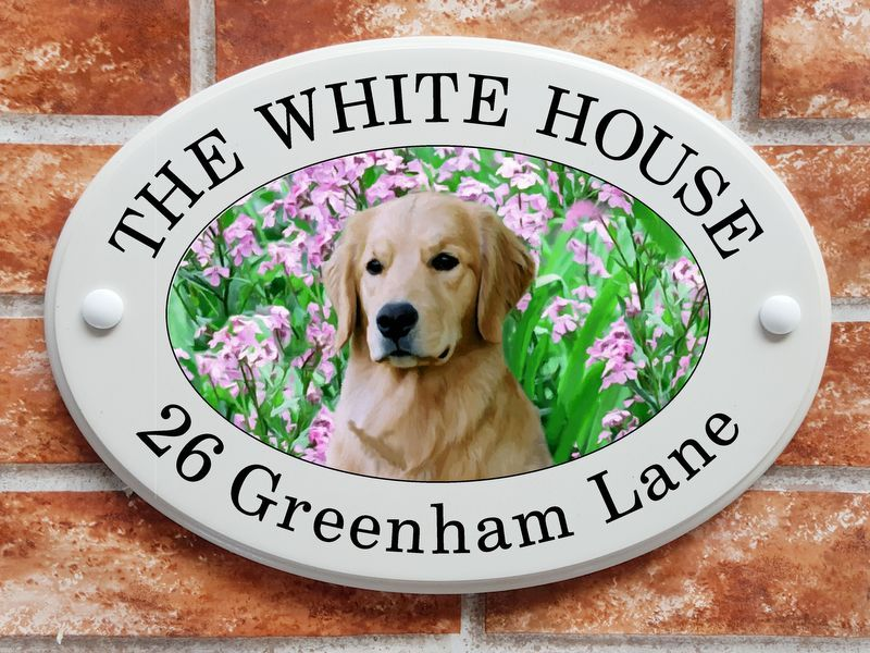 Golden Retriever dog and flowers - House Sign Shop