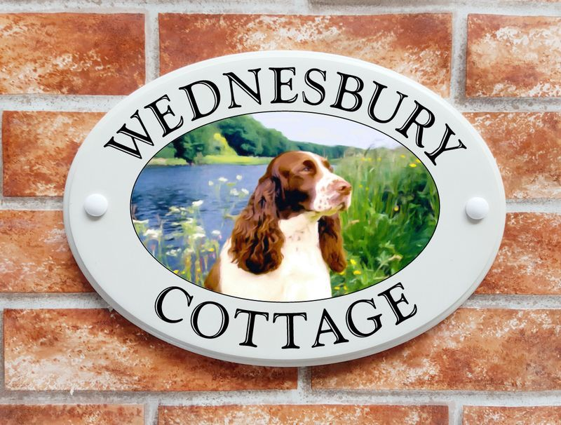 Springer Spaniel dog by the river - House Sign Shop