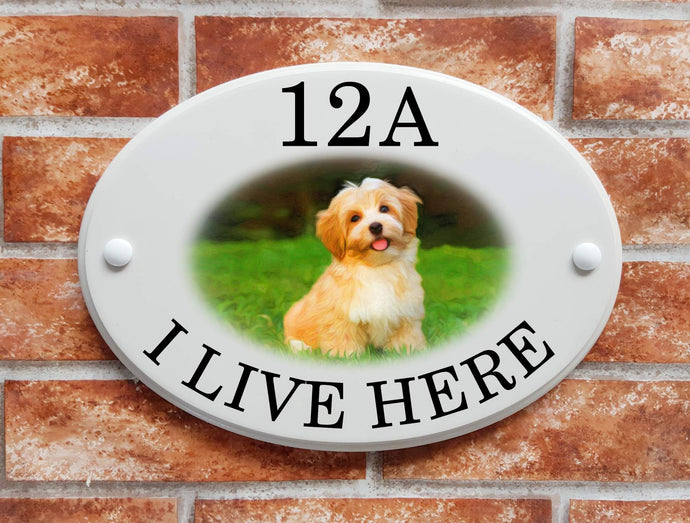 Havanese dog breed decorative house sign - House Sign Shop