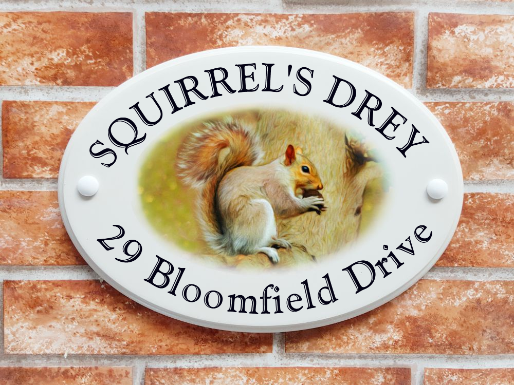 Grey Squirrel House Sign - House Sign Shop