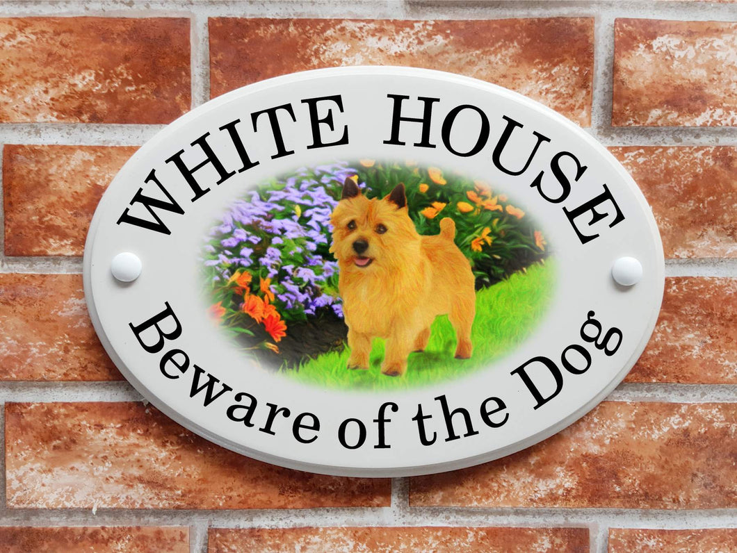 Norwich terrier dog plaque - House Sign Shop