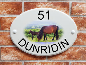 Wild ponies house plaque - House Sign Shop
