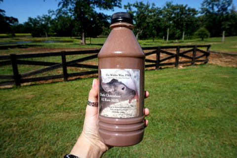 Raw A2 Dark Chocolate Milk