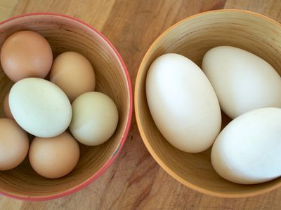 Pastured Eggs (Chicken & Duck)