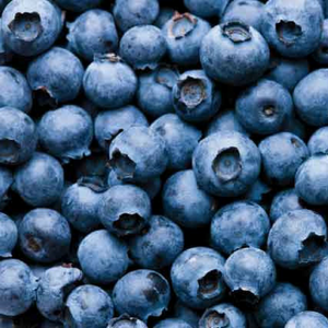 Frozen Blueberry (1kg) - Foodster.vn