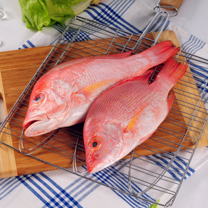 Frozen Red Fish Fillet (2pcs, 380g) - Foodster.vn