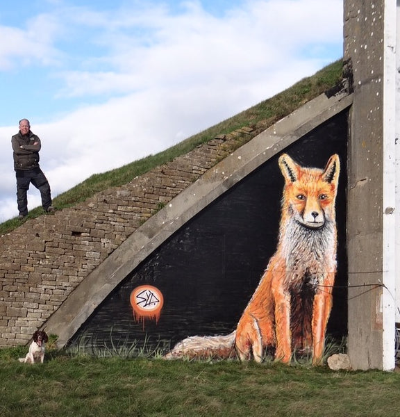 Fox Graffiti Street Art
