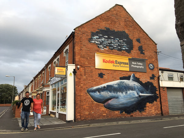 Burnham on Sea Shark by Syd Stencil Shed Street Art