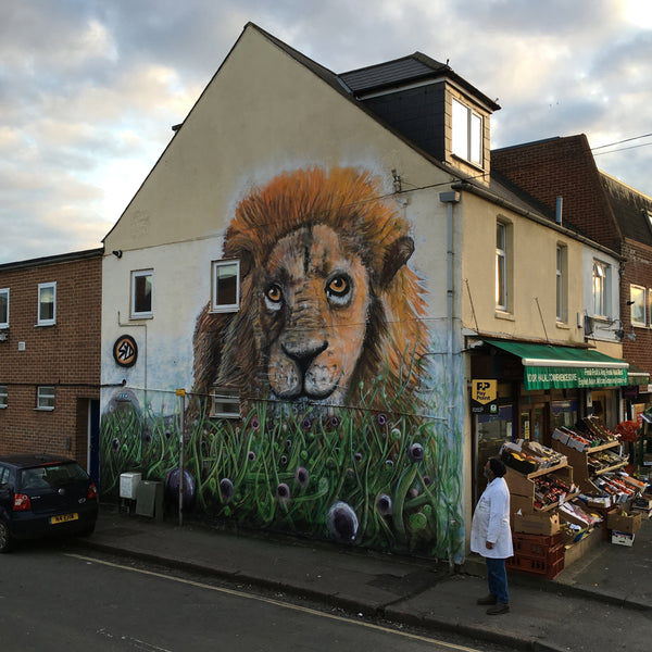 Oxford Lion Street Art Magdalen Road