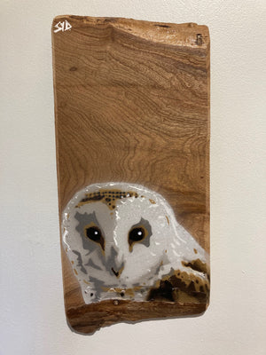 Barn Owl on Elm wood  - Unique one off piece - Stencil countryside art - Limited edition