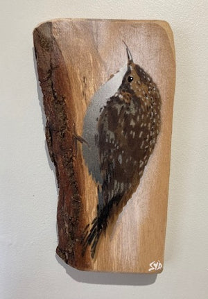 Treecreeper on Oak wood  - Spray painted Art Painting 18 x 28 cm - Signed & Limited Edition