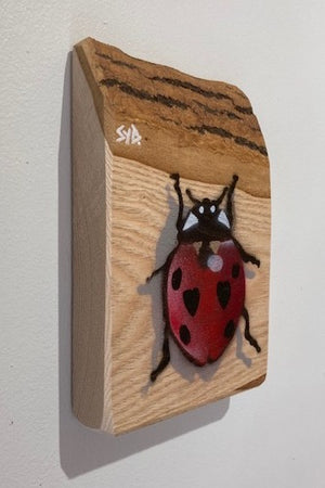 Ladybird - Handmade artwork on Barky ash wood - approx size 19 x 12cm - Signed piece