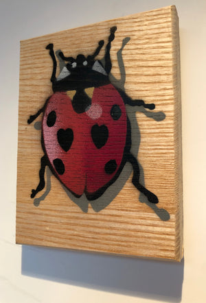 Ladybird artwork handmade on Ash wood - approx size 14 x 12cm - New from 2020