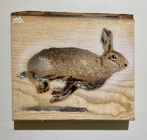 Hare 2020 'In flight' - Ash with Bark at top