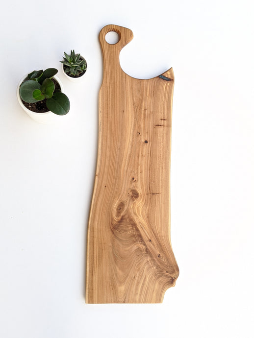 large elm charcuterie board with handle. white background with two succulents.