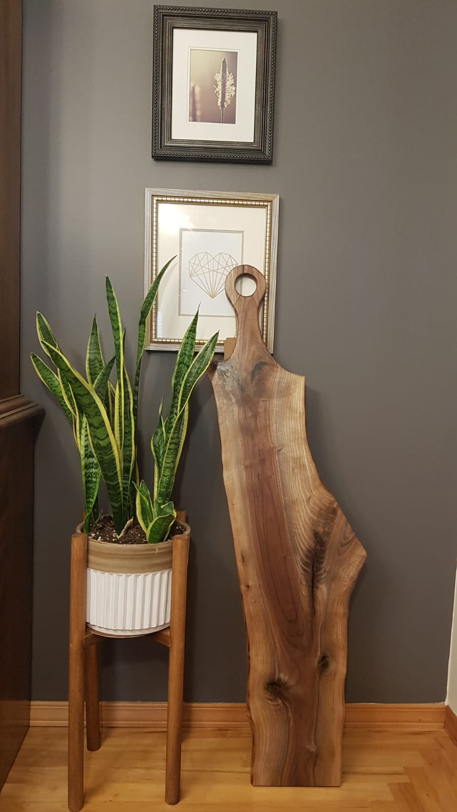 Walnut charcuterie board standing against gray wall with snake plant in wooden standing planter
