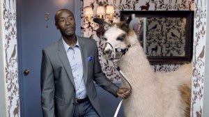 Don Cheadle Stars in Bud Light Ad