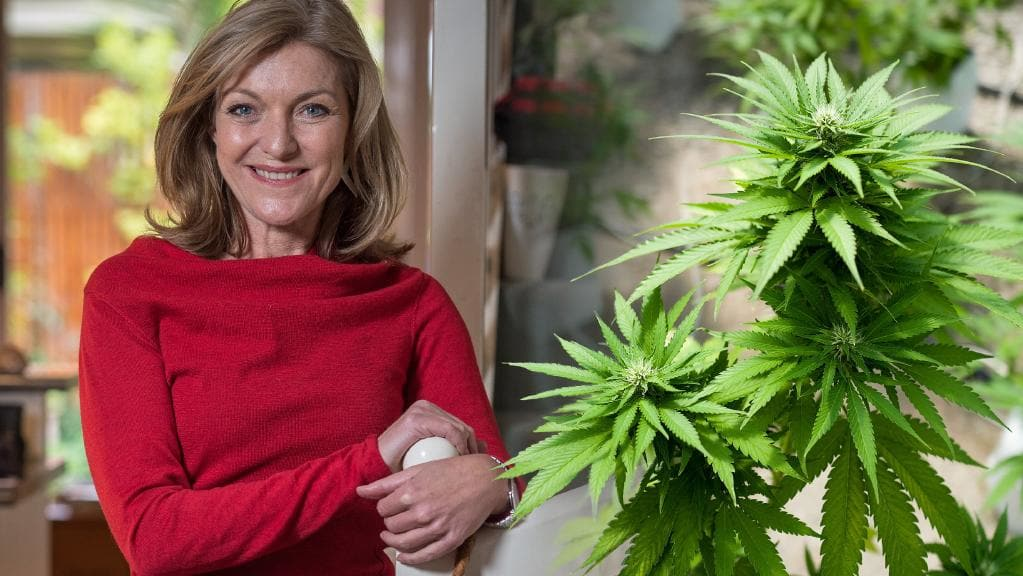 This Australian Sex Worker got elected to Parliament and is Legalising Weed