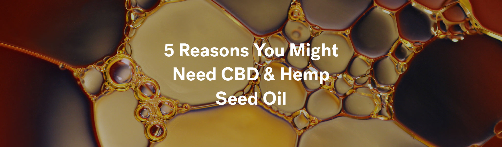 5 Reasons You Might Need CBD & Hemp Seed Oil