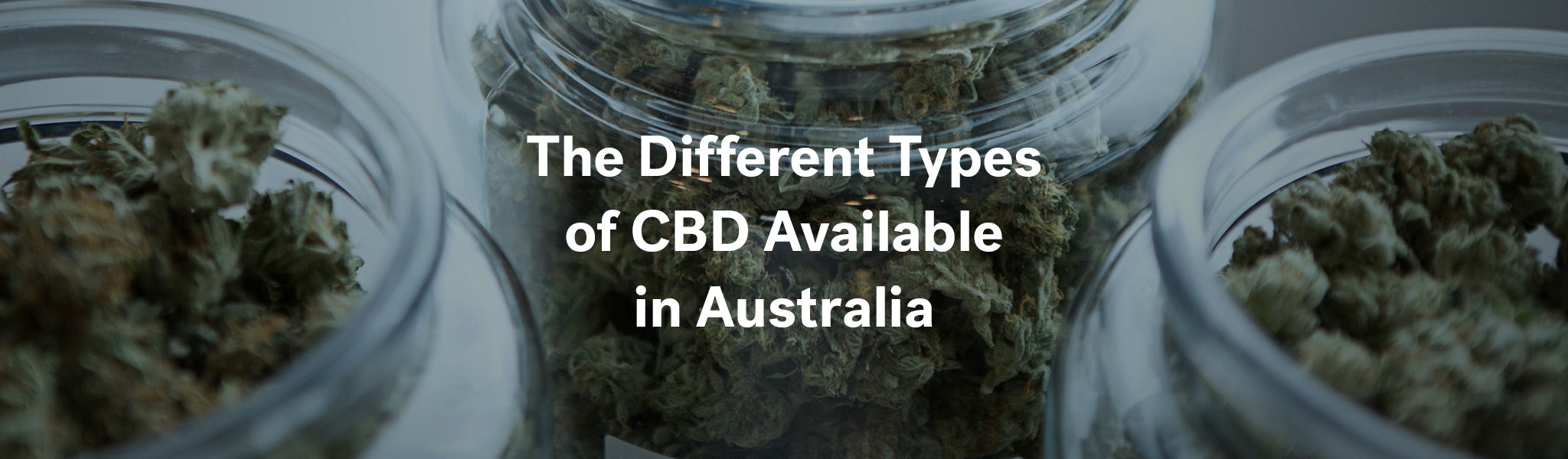 Different Types of CBD in Australia