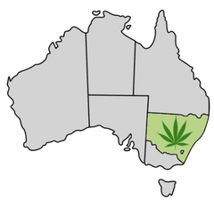 New South Wales Cannabis Laws Map