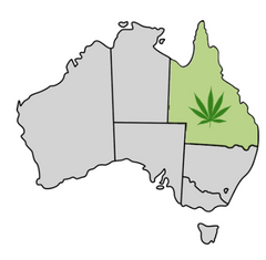 Queensland Cannabis Laws Map