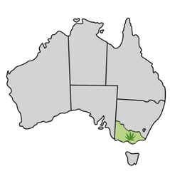 Vicoria Cannabis Laws Map