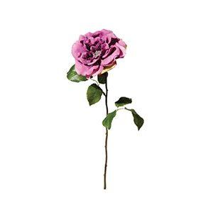 Rose a/ Diamant - Mauve