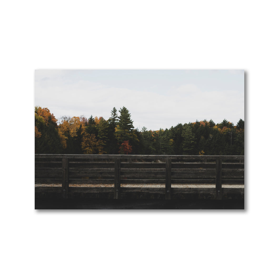 Side view of wooden pedestrian bridge.  Muted tones, contrasting on a colourful fall background.  Framed Art Prints - ZNA Creative