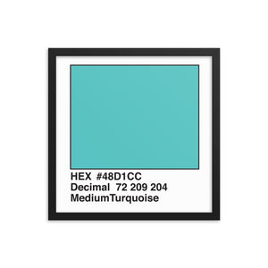 16x16 MediumTurquoise HEX print #48D1CC.  Artwork and decor for designers and developers.  Great for any workplace or home office.