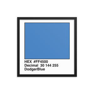 18x18 DodgerBlue HEX print #FF4500.  Artwork and decor for designers and developers.  Great for any workplace or home office.