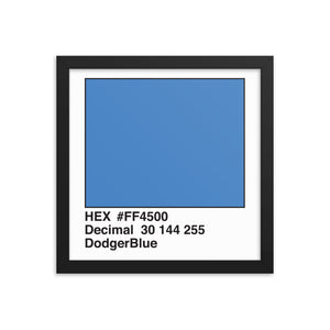 12x12 DodgerBlue HEX print #FF4500.  Artwork and decor for designers and developers.  Great for any workplace or home office.