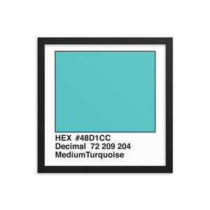 14x14 MediumTurquoise HEX print #48D1CC.  Artwork and decor for designers and developers.  Great for any workplace or home office.