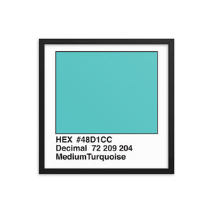 18x18 MediumTurquoise HEX print #48D1CC.  Artwork and decor for designers and developers.  Great for any workplace or home office.