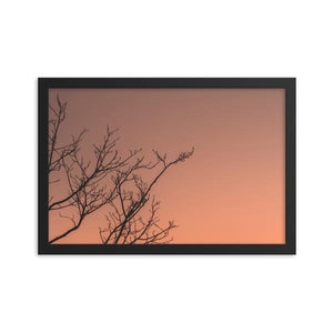 Dark branches cast against a warm February sunset.  Framed paper prints.  Office Art Prints.  ZNA Creative