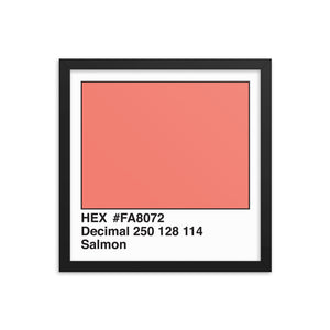 14x14 Salmon HEX print #FA8072.  Artwork and decor for designers and developers.  Great for any workplace or home office.