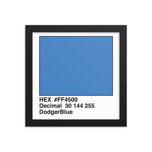 10x10 DodgerBlue HEX print #FF4500.  Artwork and decor for designers and developers.  Great for any workplace or home office.