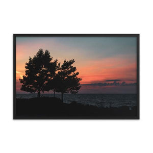 Silhouette of two large trees on Sunset Beach overlooking a beautiful sunset in Collingwood, Ontario.  Framed sunset art prints 12x18 - ZNA Creative