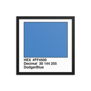 16x16 DodgerBlue HEX print #FF4500.  Artwork and decor for designers and developers.  Great for any workplace or home office.
