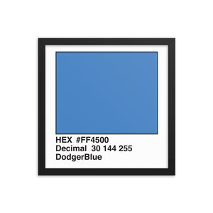 14x14 DodgerBlue HEX print #FF4500.  Artwork and decor for designers and developers.  Great for any workplace or home office.