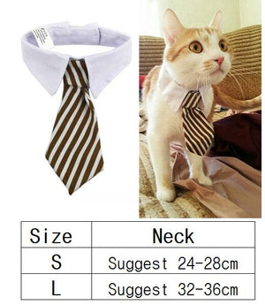 Dog Bow Tie / Collar Necktie