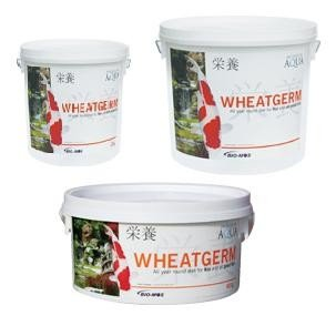 Evolution Aqua Wheatgerm - 2 Kgs - Medium Pellet - 5-6Mm