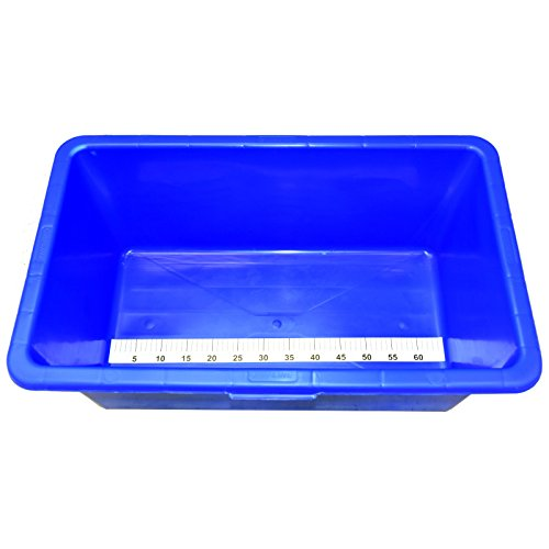 Koi inspection measuring blue fish treatment tank bowl