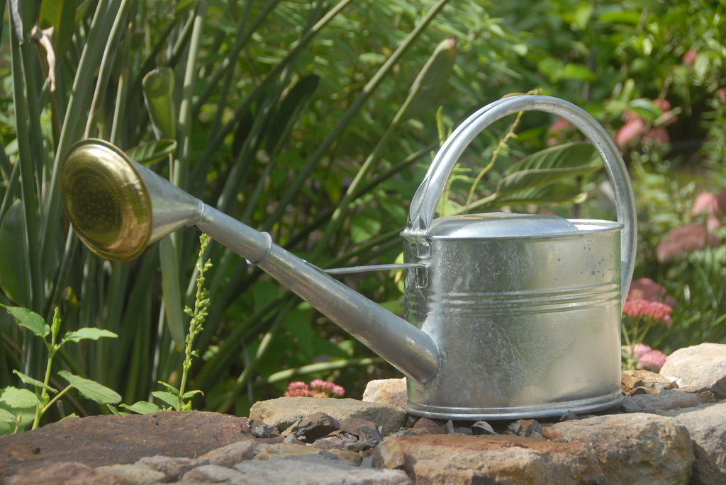 Galvanised Watering Can - Heaven in Earth