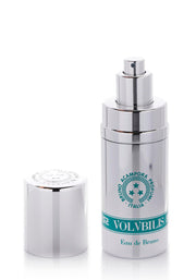 volubilis pure essence menta piperita peppermint oil parfume perfum profumo essenza pura acampora profumi