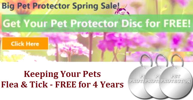 Big Pet Protector Spring Sale - SALE EXTENDED!
