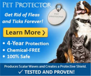 FLEA AND TICK DISC FAQS