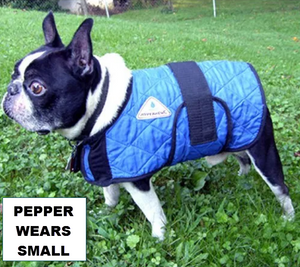 buy dog cooling coat in australia