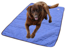 hyperkewl dog cooling mat